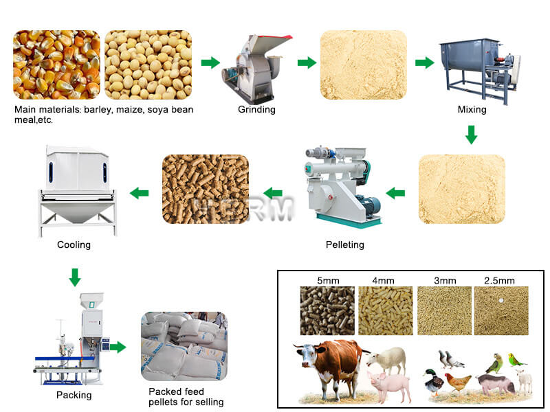 cattle feed pellet making process