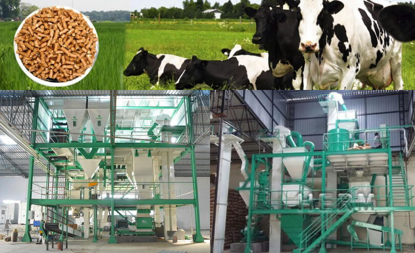 cattle feed plant for sale