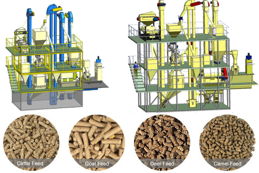 cattle feed plant manufacture-herm