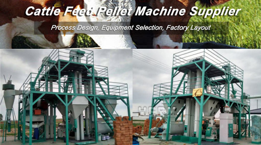 cattle feed plant manufacturer